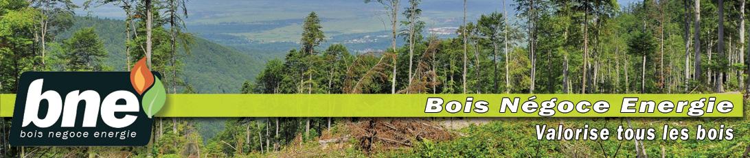 BNE u2013 Bois NégoceÉnergie Achat vente de bois u2013 Chantiers broyage criblage # Bois Negoce Energie